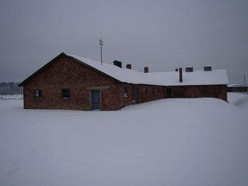 Auschwitz 1,2,3 January 2012,BW 5a,impianto disinfestazione.JPG